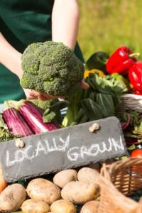 organic garden soil testing