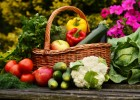Organic Gardening: Could It Be Harmful?