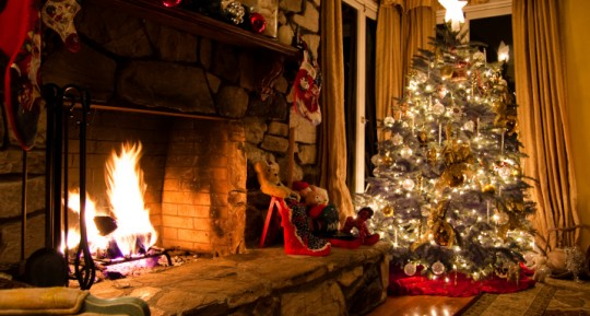 The Link Between Christmas Trees, Mold & Asthma
