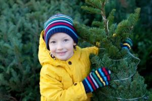 Tree Gloves