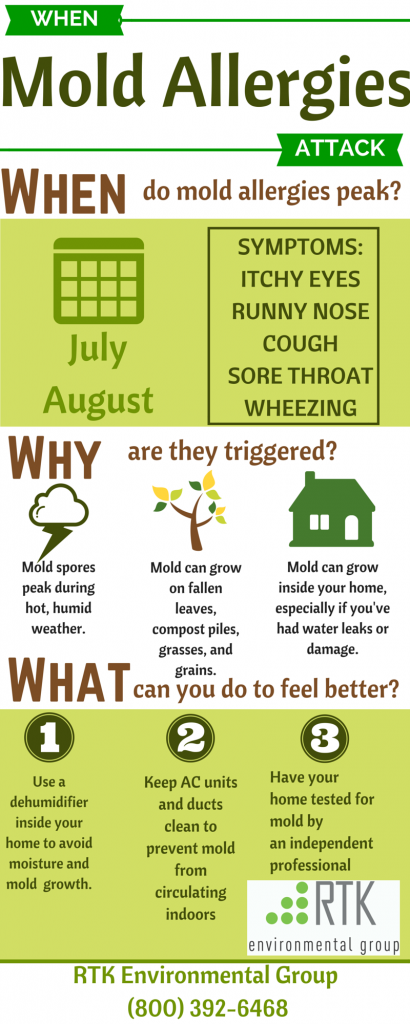When Mold Allergies Attack