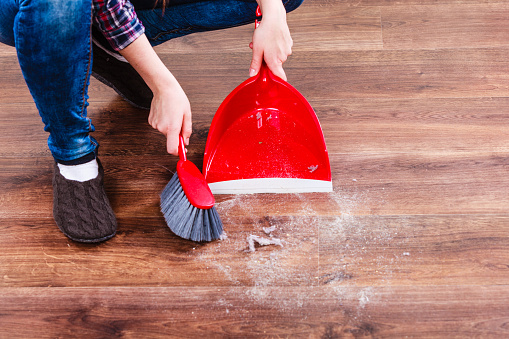 toxic household dust