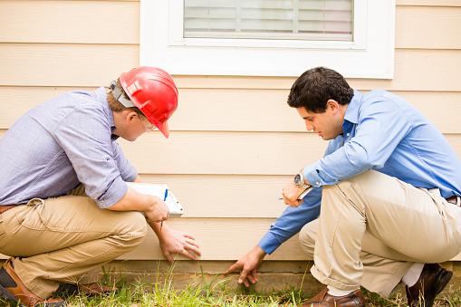 environmental home inspection