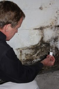 independent mold testing