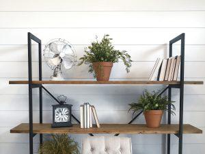 House Plants for IAQ