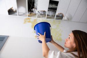 mold insurance claim