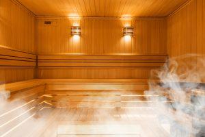 sauna mold
