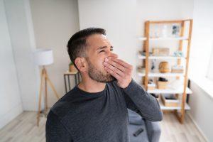 musty odor mold